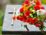 траурна агенция тера, погребални услуги видин