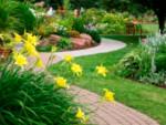 ландшафтен дизайн инвест озеленяване