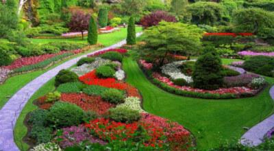 Ландшафтен дизайн Инвест - Озеленяване Стара Загора