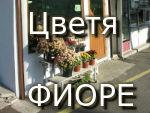 магазин за цветя - фиоре бургас, магазин фиоре бургас