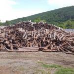 дърводобив и дървообработване стара загора