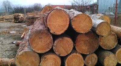 Дърва за огрев, дървен материал Кюстендил